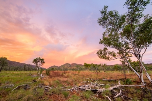 Sunset in outback Kimberley