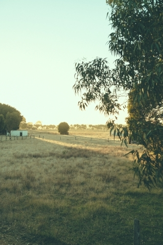 Sunset over a paddock and rural landscape