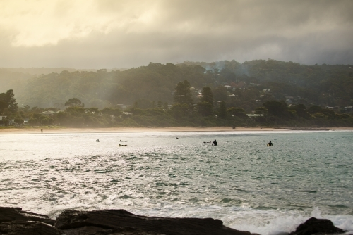 Surfers at Lorne beach