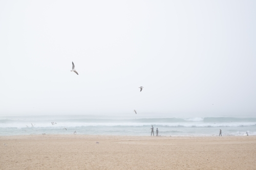 surfers enjoy the waves and the dense fog