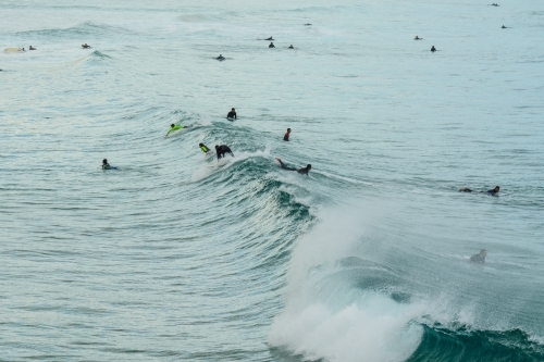 Surfers in the water waiting for a big wave