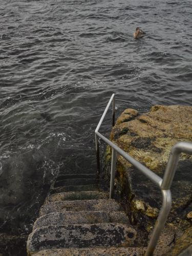 Steps leading down to sea and man swimming near Bronte Ocean pool