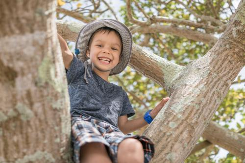 Cute 5 year old mixed race boy wearing a blue hat climbs a tree