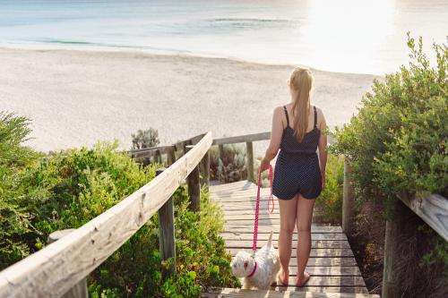 Teenage girl walking down boardwalk stairs to the beach with her dog at sunset