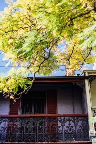Terrace house window and balcony with bright branch of leaves hanging over