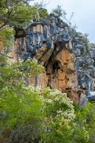 the limestone formations at Jenolan Caves