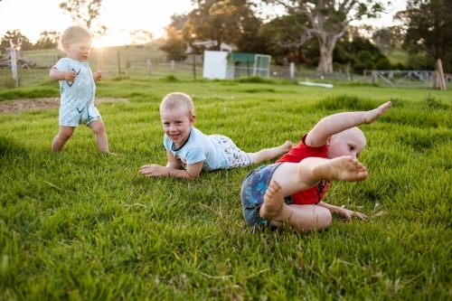 Three brothers roll and play on soft green grass of a family farm in the warm golden afternoon sun.