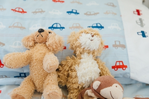 Three children's teddy bears, light brown on light blue bedding with red, blue, white & grey cars