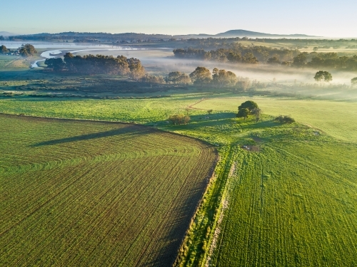 An aerial view of fog over a river running through newly planted green crops
