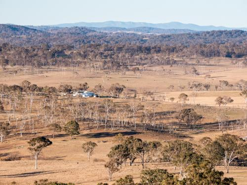 Dry brown winter rural landscape on the Northern Tablelands