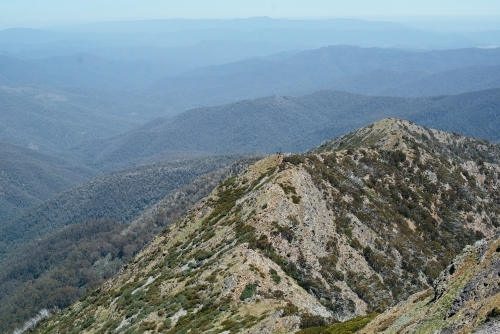 View toward Mansfield from West Ridge trail, Mt Buller