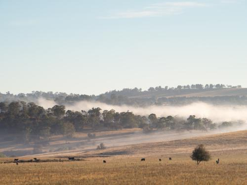 Mist in the hills, with clear blue sky