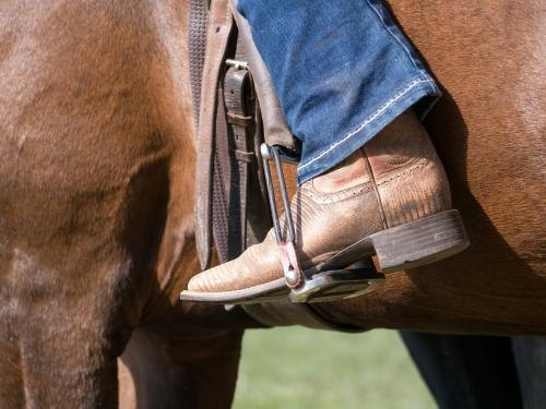 Horse riding boots in a stirrup