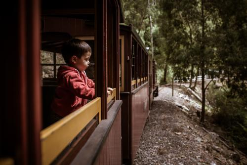 Excited 2 year old mixed race boys cheerfully rides the Walhalla historic train