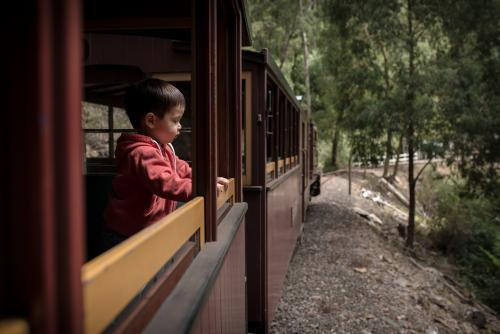 Excited 2 year old mixed race boy rides the Walhalla historic train