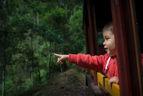 Excited 2 year old mixed race boy cheerfully rides the Walhalla historic train