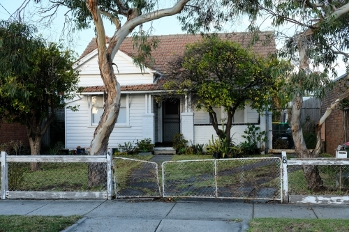 Weatherboard house with gum trees and old fence