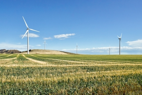 Wind farm with paddock and crops in foreground