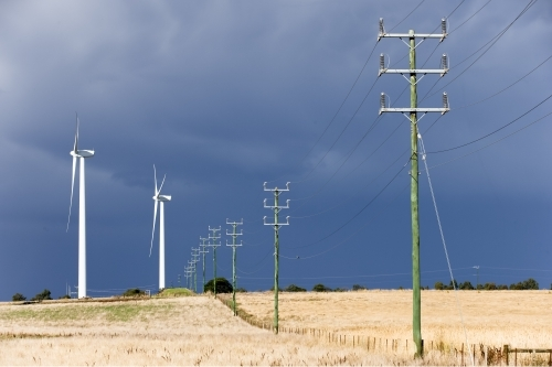 Wind turbines and power lines in a paddock