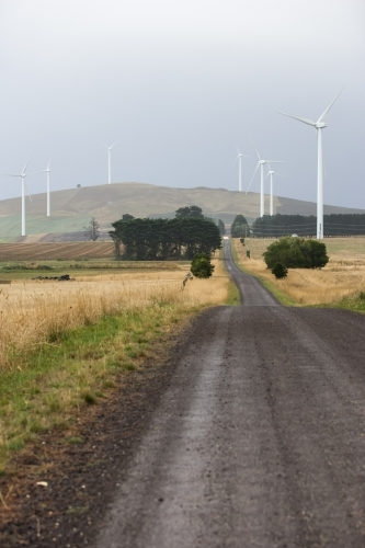 Country road leading through a wind farm