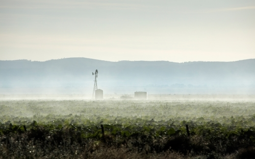 windmill and tanks on a misty winter morning