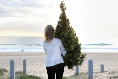 Woman carrying Christmas tree onto beach at sunrise