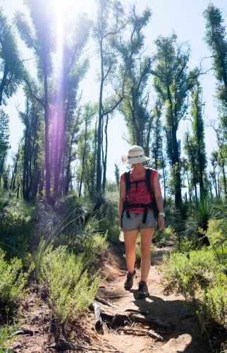 Woman hiking on Bibbulmun Track surrounded by trees and sun flare