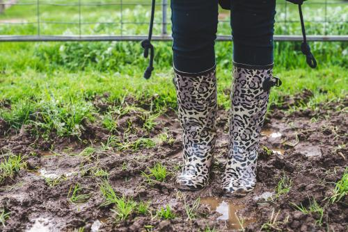 Woman's legs standing in muddy field wearing gumboots