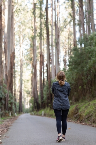 Woman standing on road is dwarfed by majestic gum trees