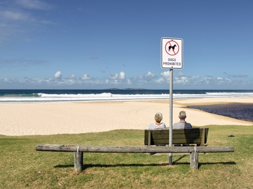 Older couple sitting on bench overlooking a beach