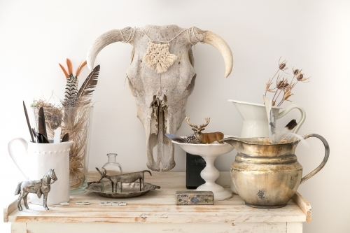 Bull Skull on the wall above a dresser top of collected natural objects