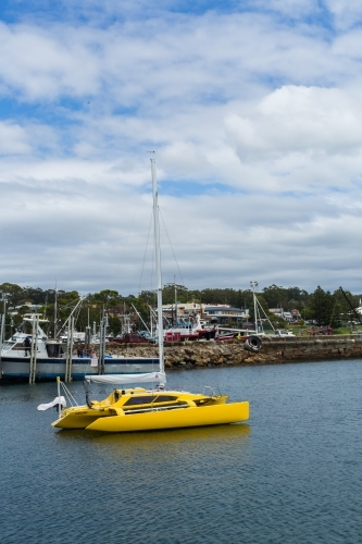 yellow boat (catamaran) in Ulladulla harbour
