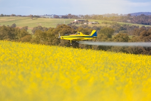yellow plane used for crop dusting (spraying pesticides on) paddocks or fighting bush fires