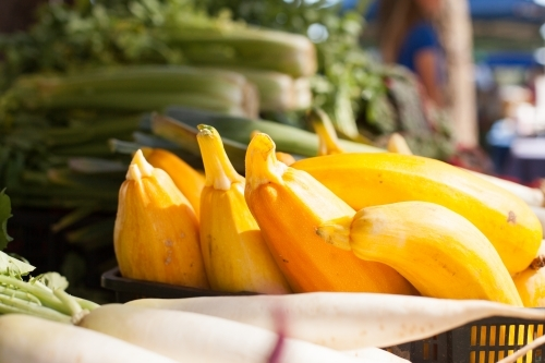 Yellow squash at local farmers market