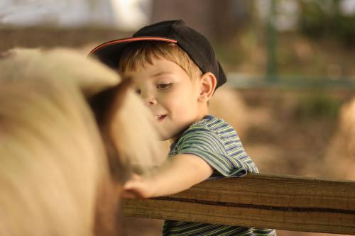 Young boy patting a pony at the local show