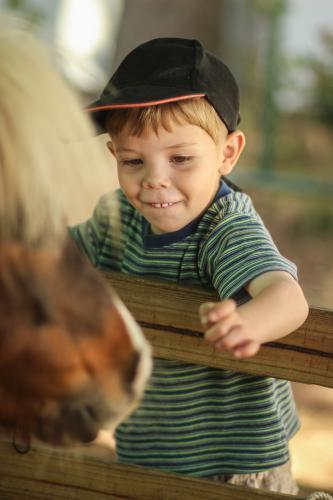 Young boy patting a pony at the show