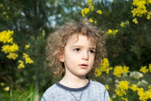 Young boy sitting in a garden with wattle trees