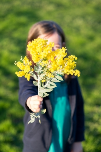 Young girl holding up a branch of wattle