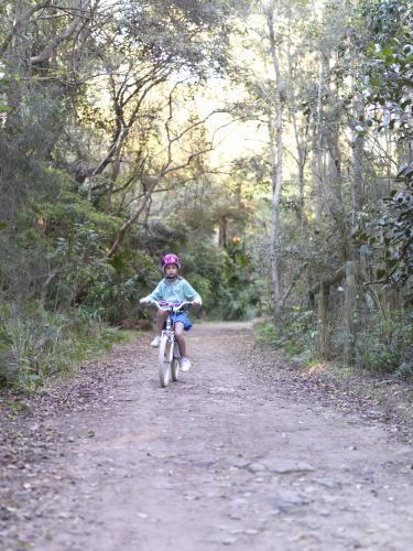 Young girl in purple helmet riding bike on bush track