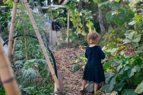 Young girl playing in permaculture garden