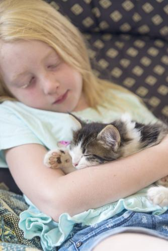 Young girl snuggling with sleeping rescue kitten