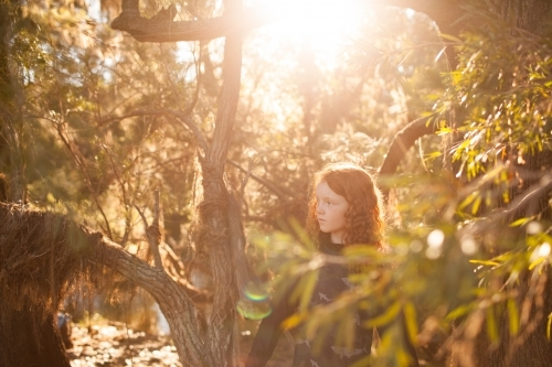 Young girl standing among trees in afternoon light