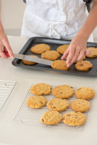 Young woman placing fresh cookies onto cooling tray