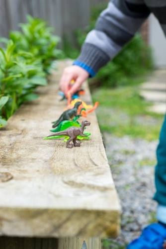 Young child lines up toy dinosaurs on a wooden plank