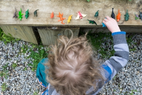Overhead view of young boy playing with his dinosaurs in the backyard